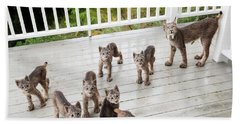 Lynx Family Portrait Bath Towel