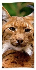 Lynx Portrait Bath Towel