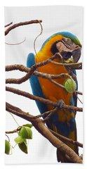 Macaw  Bath Towel