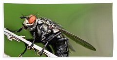 Macro Fly Hand Towel