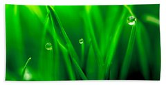 Macro Image Of Fresh Green Grass Hand Towel by John Williams