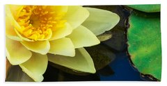 Macro Image Of Yellow Water Lilly Hand Towel by John Williams