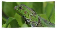 Macro Of A Green Iguana Bath Towel by DejaVu Designs