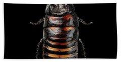 Madagascar Hissing Cockroach Hand Towel