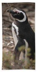 Magellanic Penguin No. 1 Hand Towel by Sandy Taylor