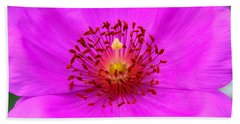 Magic Magenta - Calandrinia Hand Towel