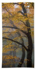 Magical Forest Blue Ridge Parkway Bath Towel