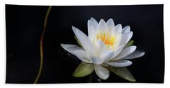 Magical Water Lily Hand Towel by Michelle Wiarda