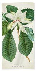 Magnolia Botanical Print Magnolia02 Bath Towel
