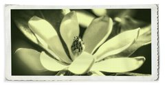 Magnolia Hand Towel by Garry McMichael