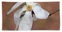 Hand Towel featuring the photograph Magnolia Grace by Nikolyn McDonald