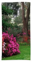 Hand Towel featuring the photograph Magnolia Plantation - Fs000148a by Daniel Dempster