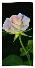 Hand Towel featuring the photograph Maid Of Honour Rose 001 by George Bostian
