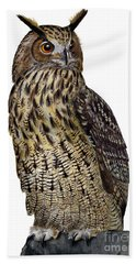 Majestic Eurasian Northern Eagle Owl Bubo Bubo - Hibou Grand-duc - Buho Real - Nationalpark Eifel Hand Towel