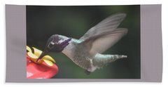 Bath Towel featuring the photograph Juvenile Male Anna's At Feeder by Jay Milo