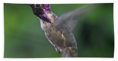 Male Anna's Hummingbird In Flight Hand Towel by Jay Milo