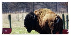 Male Bison Bath Towel