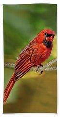 Male Cardinal Headshot  Bath Towel