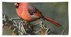 Male Cardinal Hand Towel by Ken Everett