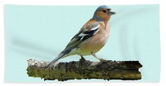 Bath Towel featuring the photograph Male Chaffinch, Blue Background by Paul Gulliver