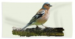 Hand Towel featuring the photograph Male Chaffinch, Cream Background by Paul Gulliver