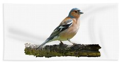 Hand Towel featuring the photograph Male Chaffinch, Transparent Background by Paul Gulliver