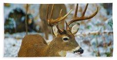 Male Deer In Snow Hand Towel