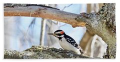 Bath Towel featuring the photograph Male Downey Woodpecker 1112 by Michael Peychich