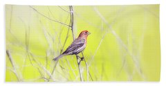 Male Finch On Bare Branch Bath Towel