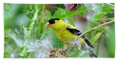 Male Goldfinch Hand Towel