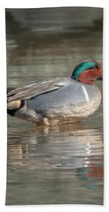 Male Green-winged Teal Dwf0171 Hand Towel