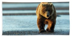 Male Grizzly At Low Tide Hand Towel