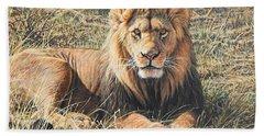 Male Lion Portrait Bath Towel