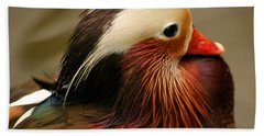 Male Mandarin Duck China Hand Towel by Ralph A  Ledergerber-Photography