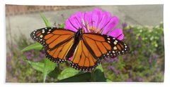 Male Monarch  Hand Towel