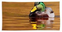 Mallard Drake In The Golden Water Hand Towel