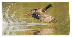 Mallard Duck 1952-112017-2cr Hand Towel