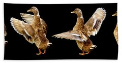 Mallard Duck Stretching Her Wings Bath Towel