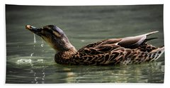 Bath Towel featuring the photograph Mallard Sipping Water by Ray Congrove