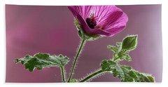 Mallow Flower 3 Hand Towel