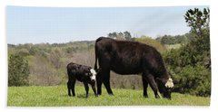 Mama Cow And Calf In Texas Pasture Hand Towel