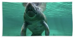Manatee Breathing Hand Towel by Tim Fitzharris