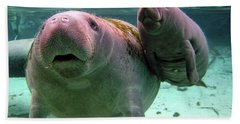 Manatee Mom And Calf Hand Towel