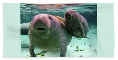 Manatee Mom And Calf Bath Towel