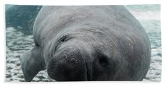Manatee Bath Towel