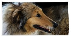 Bath Towel featuring the photograph Man's Best Friend by Bob Christopher