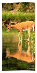 Bath Towel featuring the photograph Deer Reflections In Fishercap by Adam Jewell