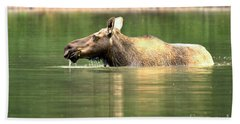 Bath Towel featuring the photograph Many Glacier Moose 7 by Adam Jewell