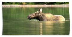 Bath Towel featuring the photograph Many Glacier Moose 8 by Adam Jewell