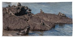 Marine Iguanas And Sealion Pup At Punta Espinoza Fernandina Island Galapagos Islands Bath Towel